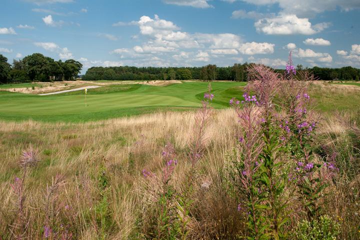 Pin High golfbaan Bergvliet
